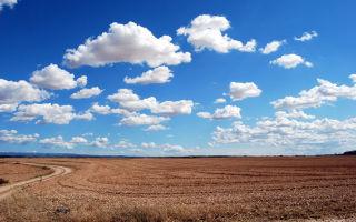 Выдел земельного участка из общей долевой собственности (размежевание) и межевание долей