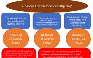 Штрафы и пени по земельному налогу для физ. лиц: как рассчитать