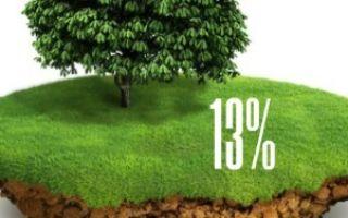 Особенности и нюансы дарения доли земельного участка родственникам