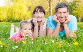 Земельный участок молодой семье — алгоритм получения и правовые нюансы
