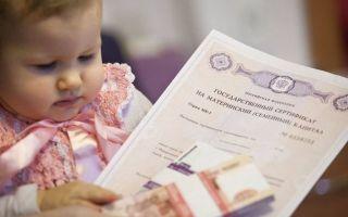 Как менялся размер материнского капитала со временем?