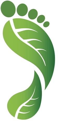 Материальную ответственность за экологические правонарушения могут нести сами руководители
