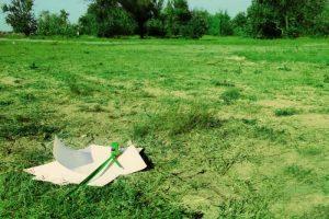 Как встать и узнать свою очередь на земельный участок