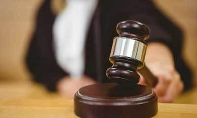 Межевание земельного участка и споры с соседями: особенности досуденого урегулирования и подачи иска в суд