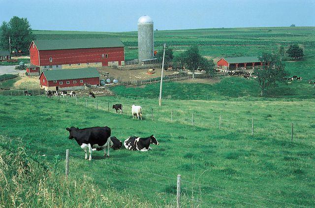 Специфика и назначение кадастровых работ при межевании земельного участка