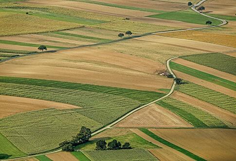 Нецелевое использование земельного участка: ответственность и наказания