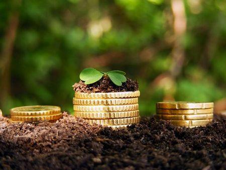 Земельный налог для юридических лиц и ИП: кому сколько надо платить?