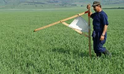 Как провести межевание дачного участка и земли сельскохозяйственного назначения