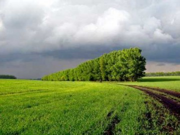 Снятие с кадастрового учета земельного участка и внесение изменений