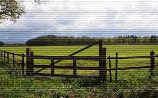 Порядок приватизации земельного участка находящегося в аренде
