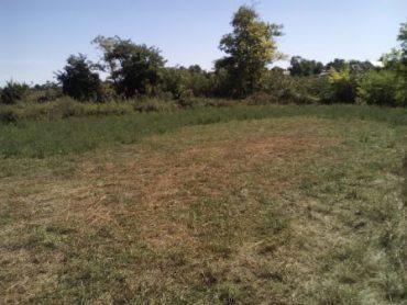 Выкупная стоимость земельного участка: особенности и способ вычисления
