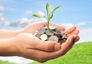 Оплата земельного налога физических лиц: порядок и сроки